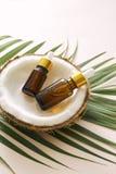 Έλαιο καρύδων στο μπουκάλι με τα ανοικτά καρύδια και πολτός στο βάζο, πράσινο υπόβαθρο φύλλων φοινικών Φυσικά καλλυντικά προϊόντα στοκ φωτογραφία με δικαίωμα ελεύθερης χρήσης