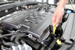 Έλεγχος επιπέδων πετρελαίου της μηχανής αυτοκινήτων από τους μηχανικούς σε ένα αυτοκίνητο worksh Στοκ εικόνες με δικαίωμα ελεύθερης χρήσης