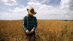 Έλεγχος της Farmer έτοιμος να συγκομίσει τη φυτεία canola φιλμ μικρού μήκους