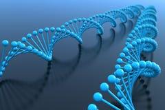 έλικες DNA Στοκ εικόνες με δικαίωμα ελεύθερης χρήσης