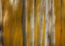 Έλξη φθινοπώρου Στοκ φωτογραφία με δικαίωμα ελεύθερης χρήσης