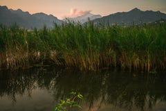 Έλος στο βουνό λιμνών κατά τη διάρκεια του ηλιοβασιλέματος το καλοκαίρι στοκ εικόνα με δικαίωμα ελεύθερης χρήσης