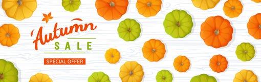 Έμβλημα Ιστού για την πώληση φθινοπώρου Οριζόντιο ιπτάμενο εμβλημάτων με τις κολοκύθες, φύλλα σε έναν άσπρο ξύλινο πίνακα Ειδική  Στοκ Εικόνες