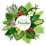 Έμβλημα καλοκαιρινών διακοπών του τροπικών φοίνικα και του λουλουδιού απεικόνιση αποθεμάτων