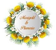 Έμβλημα κύκλων με Marigold, τα λουλούδια plumeria και τα φύλλα φοινικών, Στοκ Εικόνες