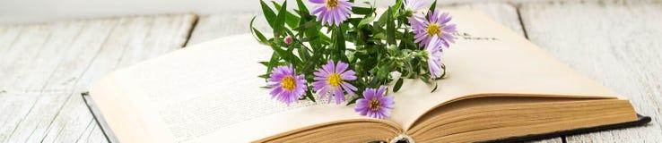 Έμβλημα των ανθίζοντας λουλουδιών asters της Virgin στο ανοικτό βιβλίο στο παράθυρο Θερινό υπόβαθρο φθινοπώρου στοκ εικόνες