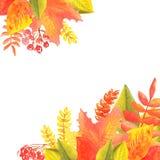 Έμβλημα Watercolor των φύλλων και των κλάδων που απομονώνονται στο άσπρο υπόβαθρο Απεικόνιση φθινοπώρου για τις ευχετήριες κάρτες διανυσματική απεικόνιση