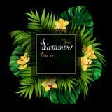 Έμβλημα διακοπών με τον τροπικό φοίνικα, τα φύλλα monstera και τα ανθίζοντας λουλούδια ορχιδεών στο μαύρο υπόβαθρο τυριών μαλακό  Στοκ φωτογραφίες με δικαίωμα ελεύθερης χρήσης