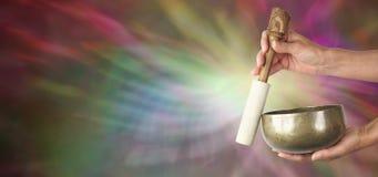 Έμβλημα Ιστού υγιούς Healer Στοκ Εικόνες