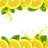 Έμβλημα με τα φρέσκα λεμόνια Στοκ Εικόνα