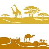 Έμβλημα με τη σαβάνα και την έρημο, σκιαγραφία Στοκ φωτογραφίες με δικαίωμα ελεύθερης χρήσης