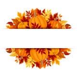 Έμβλημα με τις κολοκύθες και τα ζωηρόχρωμα φύλλα φθινοπώρου Διάνυσμα eps-10 Στοκ Εικόνα