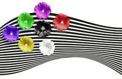 Έμβλημα λουλουδιών Πολύχρωμα λουλούδια στο ριγωτό υπόβαθρο Πράσινος, μαύρος, άσπρος, κόκκινος, ρόδινος, ιώδης κίτρινος, λουλούδια Στοκ Εικόνα