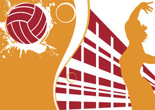 Έμβλημα πετοσφαίρισης στοκ εικόνες