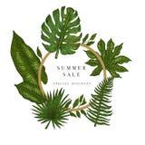 Έμβλημα πώλησης, αφίσα με τα φύλλα φοινικών, φύλλο ζουγκλών και εγγραφή γραφής Floral τροπικό θερινό υπόβαθρο διάνυσμα απεικόνιση αποθεμάτων