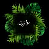 Έμβλημα πώλησης με τα τροπικά φύλλα φοινικών και monstera στο μαύρο υπόβαθρο Άσπρη εγγραφή στη θερινή αφίσα Στοκ Εικόνες