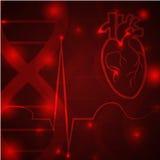 Έμβλημα σφυγμού καρδιών Στοκ εικόνα με δικαίωμα ελεύθερης χρήσης