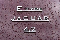 Έμβλημα του ε-τύπου ιαγουάρων αθλητικών αυτοκινήτων στις σταγόνες βροχής στο burgundy υπόβαθρο Στοκ Φωτογραφία
