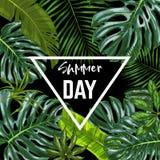 Έμβλημα τριγώνων με τα ρεαλιστικά τροπικά φύλλα Στοκ Φωτογραφίες