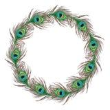 Έμβλημα φτερών Peacock απεικόνιση αποθεμάτων