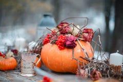 Έμπνευση αποκριών ζωή φθινοπώρου ακόμα κολοκύθα, ξηρά τριαντάφυλλα, κέικ μελιού viburnum σε ένα βάζο κλαδίσκοι Στον πίνακα Στοκ φωτογραφία με δικαίωμα ελεύθερης χρήσης