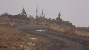 Ένας άνεμος βρώμικος δρόμος καταλήγει μια βουνοπλαγιά μέσω της χειμερινής καφετιάς χλόης προς τα απόμακρα κομψά δέντρα μια ομιχλώ στοκ εικόνες