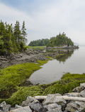 Ένας ήρεμος κόλπος του ποταμού Στοκ φωτογραφία με δικαίωμα ελεύθερης χρήσης