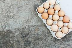 Ένας δίσκος εγγράφου με τα αυγά κοτόπουλου βρίσκεται σε έναν συγκεκριμένο πίνακα Ανοιχτός χώρος για το κείμενό σας, φως της ημέρα Στοκ Φωτογραφίες