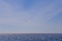 Ένας απομονωμένος γλάρος που γλιστρά στη θαλάσσια αύρα Στοκ Φωτογραφίες