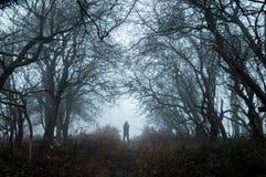 Ένας απόκοσμος απομονωμένος με κουκούλα αριθμός σε ένα misty χειμερινό δάσος με έναν σκοτεινό που χαμηλώνουν εκδίδει στοκ φωτογραφία