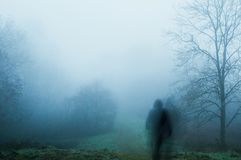 Ένας απόκοσμος, θολωμένος, πνευματικός, με κουκούλα αριθμός για τη στάση σε μια πορεία μια ομιχλώδη χειμερινή ημέρα r στοκ εικόνα