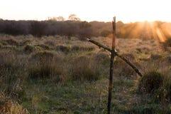 Ένας απόκοσμος ξύλινος σταυρός που γίνεται από το δέντρο διακλαδίζεται στοκ φωτογραφίες