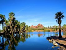 Ένας από τους κρυμμένους πολύτιμους λίθους της Αριζόνα, πάρκο Papago, μια όαση ερήμων Στοκ εικόνα με δικαίωμα ελεύθερης χρήσης