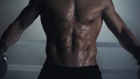 Ένας αρσενικός μπόξερ παρουσιάζει έναν Τύπο και μυς o Υπόβαθρο εγκιβωτίζοντας δαχτυλιδιών Γυμνή τοποθέτηση αθλητών στη κάμερα απόθεμα βίντεο