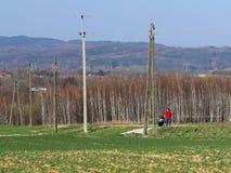 Ένας αρσενικός πατέρας περπατά στη φύση με ένα παιδί σε έναν περιπατητή παιδιών ` s κοντά στους ηλεκτρικούς πόλους Τομείς με το ν Στοκ Εικόνες