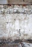 Ένας βρώμικος και τοίχος Κάθετη ανασκόπηση Στοκ Φωτογραφία