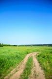 Ένας βρώμικος δρόμος σε έναν πράσινο τομέα και έναν μπλε ουρανό στοκ εικόνες
