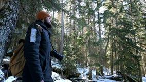 Ένας γενειοφόρος αρσενικός ταξιδιωτικός φωτογράφος με τη κάμερα του στο χειμερινό δάσος παίρνει τις εικόνες της φύσης Έννοια ταξι απόθεμα βίντεο