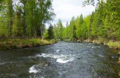 Ένας γρήγορα κινούμενος ποταμός στη χερσόνησο kenai στην άνοιξη Στοκ Εικόνα