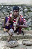 Ένας γόης φιδιών με το cobra του και python τοποθέτηση για μια φωτογραφία σε Pinnawela στη Σρι Λάνκα στοκ φωτογραφίες με δικαίωμα ελεύθερης χρήσης