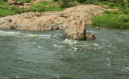 Ένας δασικός μικρός ποταμός με τους βράχους και τα δέντρα Στοκ Φωτογραφίες