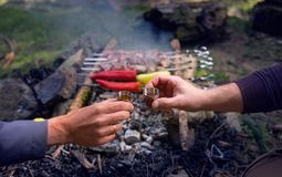 Ένας δημοφιλής που ψήνεται στο κρεατάλευρο πυρκαγιάς - ψημένο στη σχάρα Shashlik - δύο χέρια ατόμων που με τους πικρούς πυροβολισ στοκ εικόνα