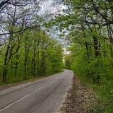 Ένας δρόμος ασφάλτου με μια εφαρμοσμένη αξονική γραμμή στοκ φωτογραφία με δικαίωμα ελεύθερης χρήσης