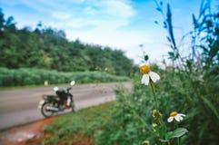 Ένας δρόμος κάτω από το μπλε ουρανό με μια μοτοσικλέτα Στοκ φωτογραφίες με δικαίωμα ελεύθερης χρήσης