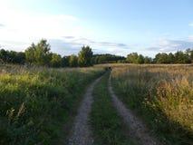 Ένας δρόμος μεταξύ των λιβαδιών στοκ εικόνα με δικαίωμα ελεύθερης χρήσης