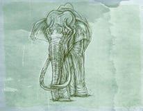ένας ελέφαντας που περπατά το ν, μια σειρά πάνθηρων ρεαλιστικών ζώων για τις κάρτες με το εκλεκτής ποιότητας υπόβαθρο, κύκνος dog Στοκ εικόνα με δικαίωμα ελεύθερης χρήσης