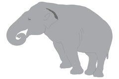Ένας ελέφαντας στοκ φωτογραφία