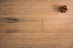 Ένας ενιαίος κώνος πεύκων στην ομάδα δεδομένων χασάπηδων Στοκ φωτογραφία με δικαίωμα ελεύθερης χρήσης