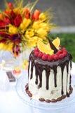 Ένας εορταστικός πίνακας που διακοσμείται με το κέικ γενεθλίων με τα λουλούδια και τα γλυκά στοκ εικόνα με δικαίωμα ελεύθερης χρήσης