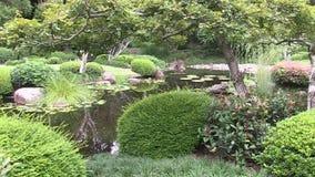 Ένας επίσημος ιαπωνικός κήπος στην Αυστραλία, στο Μπρίσμπαν ` s τοποθετεί τους βοτανικούς κήπους γουργούρισμα-Tha απόθεμα βίντεο